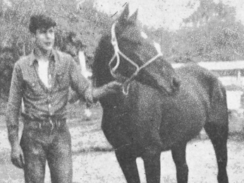 About-Cowboy-Eb